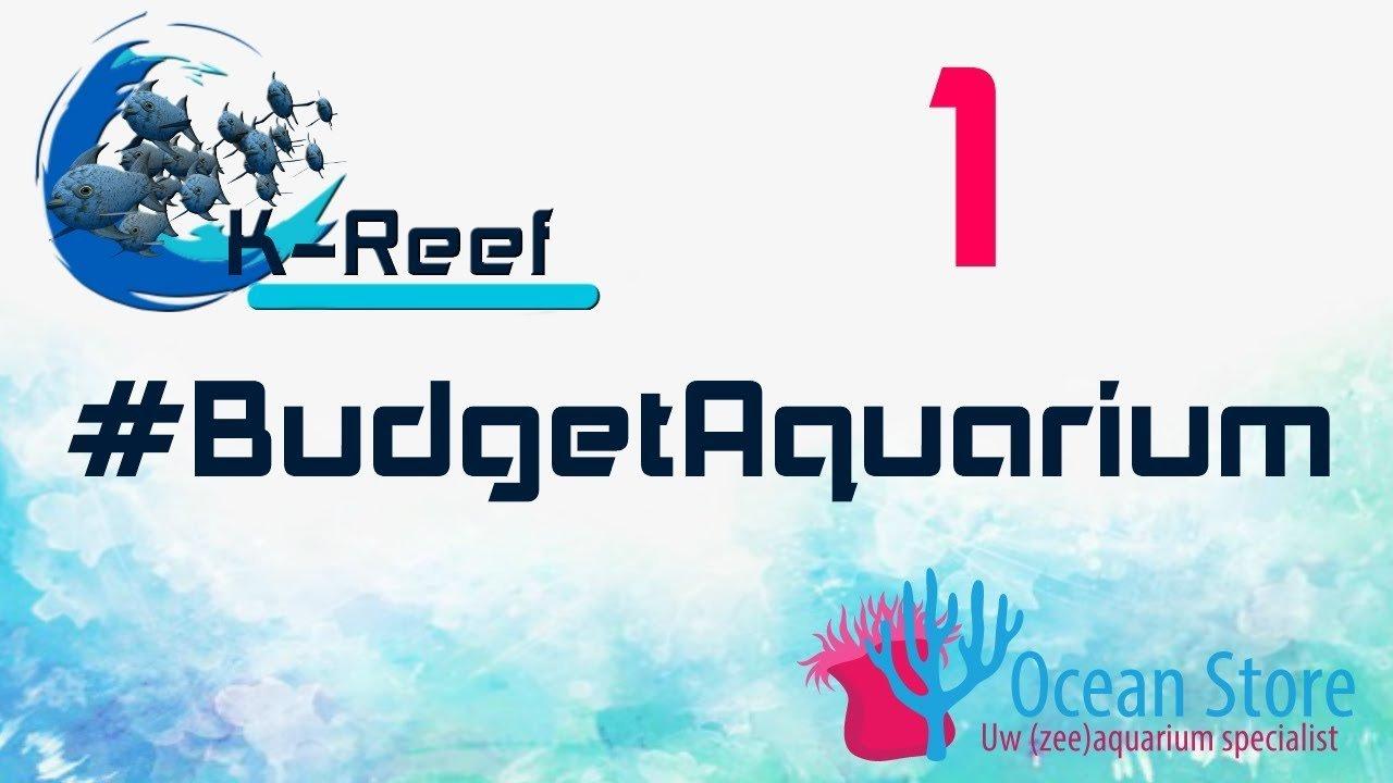 Budget zeeaquarium aflevering 1 4