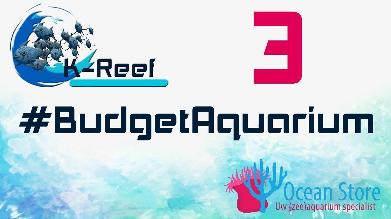Budget zeeaquarium aflevering 3 2