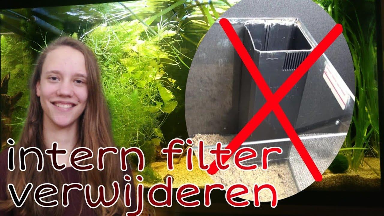 Juwel filter verwijderen 1