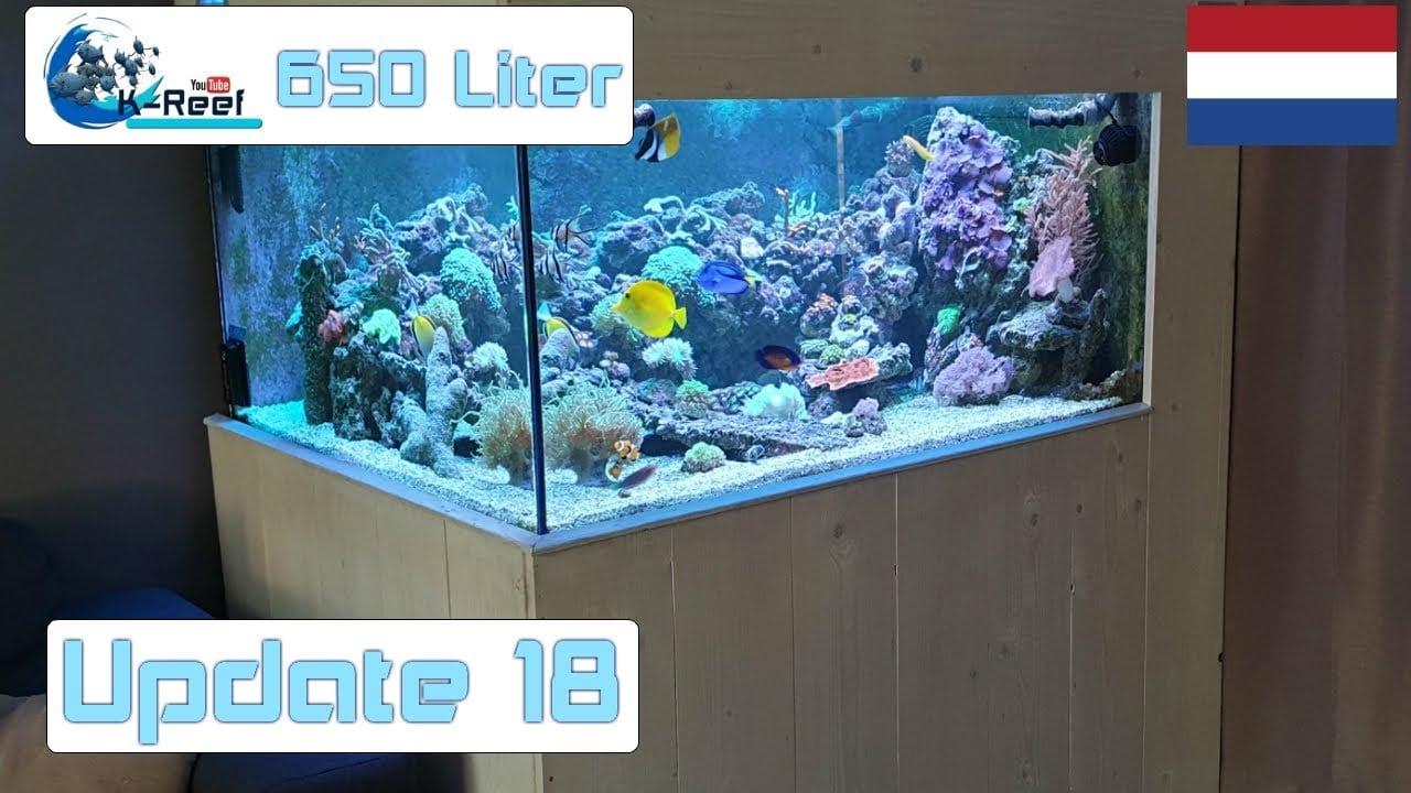 650L zoutwater update 4